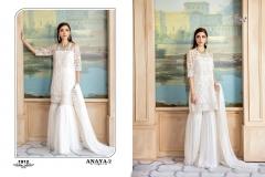 ANAYA VOL 2 (3)