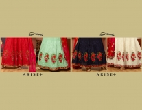 ARISE PLUS BY YOUR CHOICE (5)