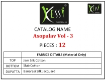 ASOPALAV VOL 3 KESSI FABRIC (14)