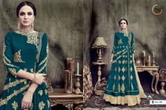 BEGUM VOL 2 BY TANU DESIGNER (4)
