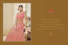 D CAT VOL 44 BY VIPUL FASHION (21)