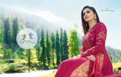 KASHMIR VALLEY VINAY FASHION (1)