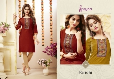 PARIDHI VOL 9 BY PSYNA (1)