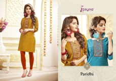 PARIDHI VOL 9 BY PSYNA (10)