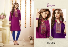 PARIDHI VOL 9 BY PSYNA (3)