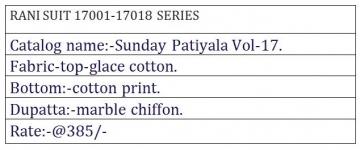 RANI SUNDAY PATIYALA VOL 17 WHOLESALE RATE AT GOSIYA EXPORTS SURAT WHOLESALE DEALER AND SUPPLAYER SURAT GUJARAT. (2)