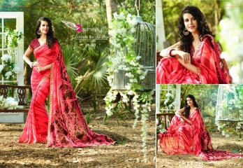 SACHI VOL-5 SAREES BY SHAILY (10)