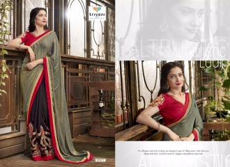 Triveni-Jhumri-9-Exclusive-Fancy-Saree-4